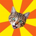 bad_advice_cat