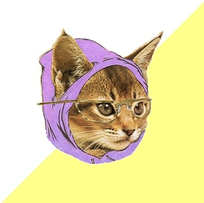 <h2>Hipster Kitty</h2>