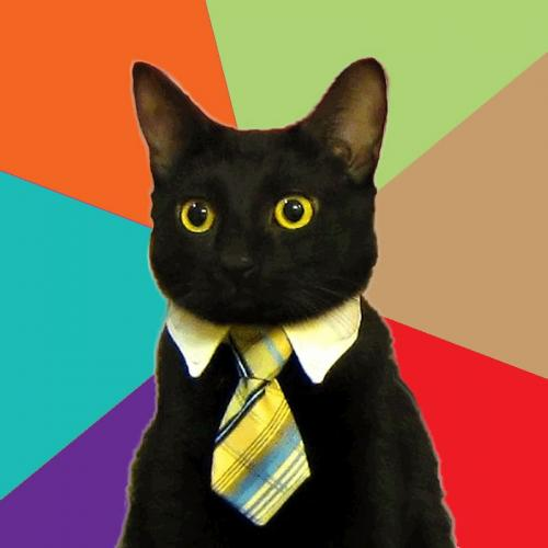 <h2>Business Cat</h2>