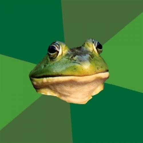 <h2>Foul Bachelor Frog</h2>