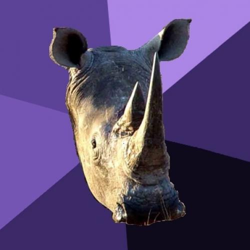 <h2>***ually Oblivious Rhino</h2>